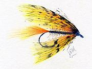 Fly Fishing Drawings Originals - Deer Hair Fly by James Eugene  Moore