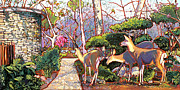 Nadi Spencer Painting Framed Prints - Deer in Baer Garden Framed Print by Nadi Spencer