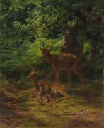 Wild Animals Painting Posters - Deer in Repose Poster by Rosa Bonheur