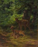 Deer In Repose Print by Rosa Bonheur