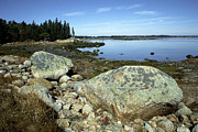 Deer Isle Granite Shoreline Print by Thomas R Fletcher