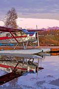 Beaver Digital Art - Dehavilland Beaver on Glass- Abstract by Tim Grams