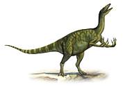 Deinocheirus Mirificus, A Prehistoric Print by Sergey Krasovskiy