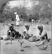 Turban Framed Prints - Delhi: Snake Charmers Framed Print by Granger