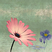 Colourful Flower Prints - Delicate Flower Print by Ian Barber