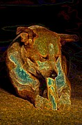 Puppies Digital Art Posters - Delicious Bone Poster by One Rude Dawg Orcutt