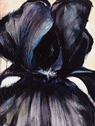 Iris Paintings - Delilah Black Iris by Jerome Lawrence
