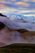 Denali National Park Prints - Denali Dawn II Print by Rick Berk