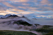 Denali National Park Prints - Denali Dawn Print by Rick Berk