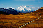 Denali National Park Prints - Denali Print by Graham Clark
