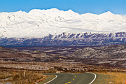 Kelly Turnage - Denali Highway