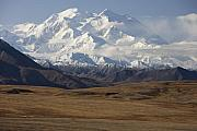 Denali National Park Prints - Denali in Early Winter Print by Tim Grams