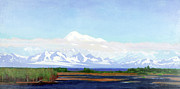 Mckinley Painting Prints - Denali Print by John Whitney