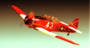 Fan Originals - Dennis Buehn and T-6 Race 43 Midnight Miss III by Gus McCrea