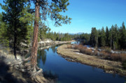 Reflective Water Photos - Deschutes River by Bonnie Bruno