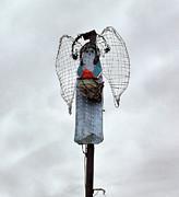 Cindy Nunn - Desert Angel