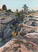 National Painting Posters - Desert Boulders Poster by Donald Maier