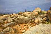 Aruba Prints - Desert Boulders of Aruba Print by David Letts