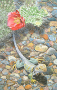 Reptiles Painting Prints - Desert Compadres Print by Karen Richardson