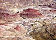 Painted Photos - Desert Palette by Mike  Dawson