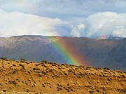 Desert Rainbow Print by Michele Penner
