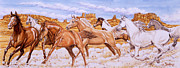Horses Painting Framed Prints - Desert Run Framed Print by Richard De Wolfe