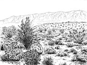 Valley Drawings Framed Prints - Desert Scrub Ecosystem Framed Print by Logan Parsons