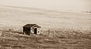 Guy Whiteley Photography Prints - Desert Shed Print by Guy Whiteley