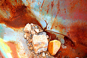 Jansson Posters - desert still life II Poster by Diane montana Jansson