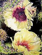 Floral Drawings Originals - Desert Sundancers by Susan Moyer