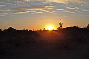 Kenny Jalet Acrylic Prints - Desert sunset 2 Acrylic Print by Kenny Jalet