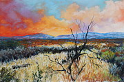 Monsoon Pastels Framed Prints - Desert Sunset 2 Framed Print by M Diane Bonaparte