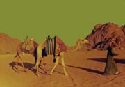 Desert Trek Print by Elizabeth Hoskinson