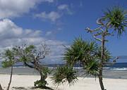 Kate Farrant - Deserted Beach