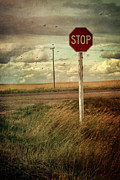 Harvested Framed Prints - Deserted red stop sign on the prairies Framed Print by Sandra Cunningham