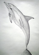 Porpoise Drawings Originals - Desintigrating Porpoise by Mayhem Mediums