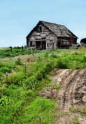 Old Barn Posters - Desolate Poster by Betty LaRue