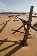 Old Fence Posts Metal Prints - Desolate Metal Print by Heather Applegate