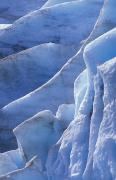 Kenai Framed Prints - Detail Of Blue Ice On Exit Glaicer Framed Print by Rich Reid
