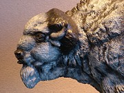 American Bison Sculpture Originals - Detail of Territorial Dispute by Peggy Detmers