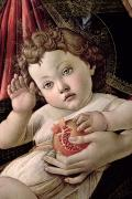 Detail Painting Prints - Detail of the Christ Child from the Madonna of the Pomegranate  Print by Sandro Botticelli