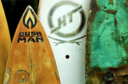 Board Fence Posters - Detail Surfboard Fence Poster by Bob Christopher
