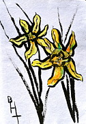 Daffodils Originals - Determination by Beverley Harper Tinsley
