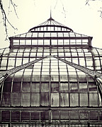 Detroit Photos - Detroit Belle Isle Conservatory by Alanna Pfeffer
