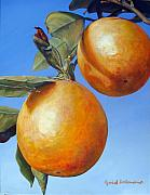 Food And Beverage Framed Prints - Deux Oranges Framed Print by Muriel Dolemieux