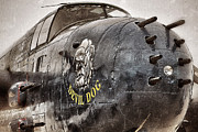 B-25 Bomber Prints - Devil Dog Print by Shad Kingston