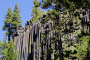 Dark Gray Blue Prints - Devils Postpile - Americas Volcanic Past Print by Christine Till