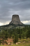 Green Ceramics Posters - Devils Tower Poster by Nena Trapp