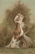 Gail Finger - Devon the Gypsy Horse