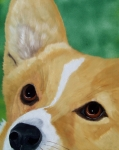 Dog Eyes Framed Prints - Devotion-Corgi Eyes of Love Framed Print by Debbie LaFrance